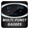 Multi Function Gauges